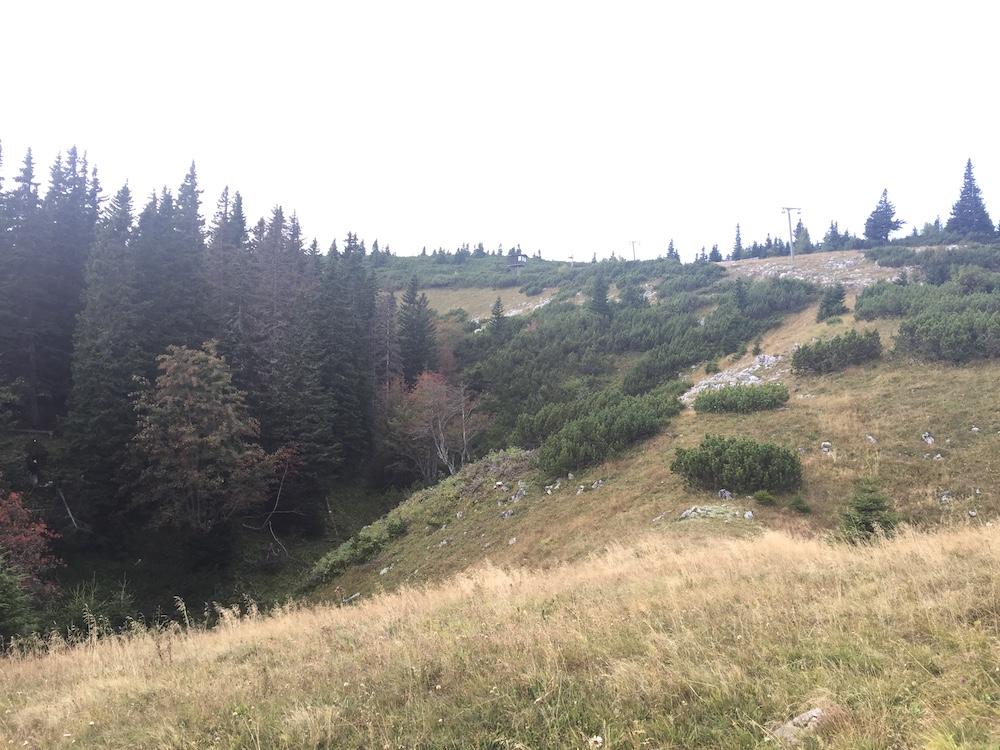 Landschaft auf der Rax