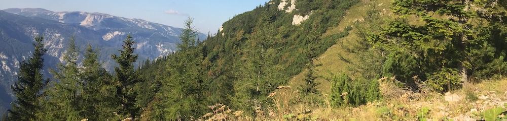 Landschaft am Schneeberg