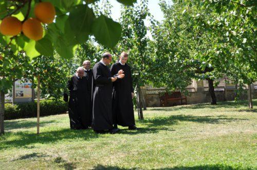 Die Göttweiger Mönche im Marillengarten